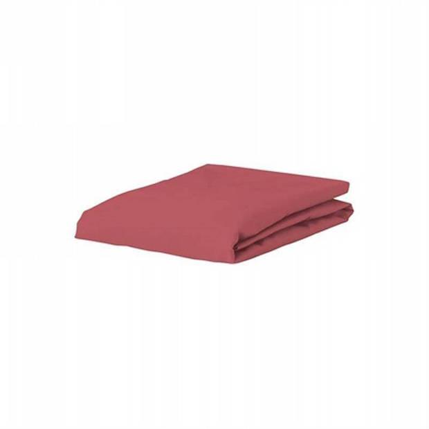 Essenza Premium jersey hoeslaken extra hoog - 97% gebreide katoen - 3% elastan - 2-persoons (140/160x200/220 cm) - Mauve