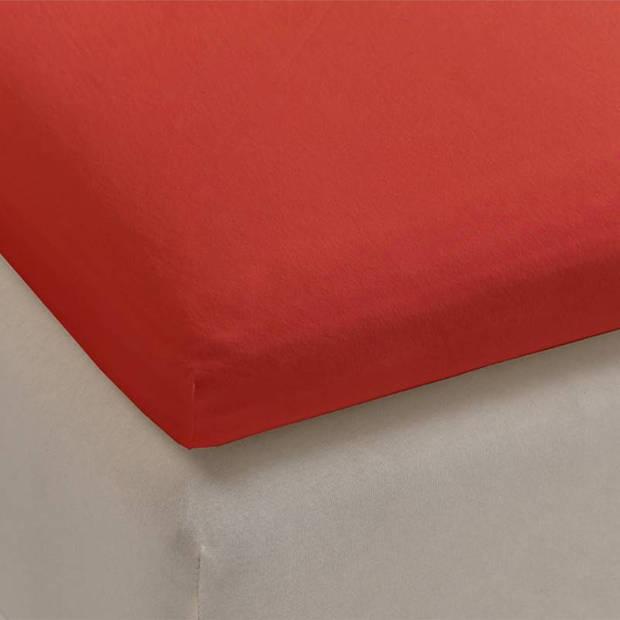 Beddinghouse jersey lycra topper hoeslaken - 95% gebreide katoen - 5% lycra - 1-persoons (70/80x200/220 cm) - Coral Red