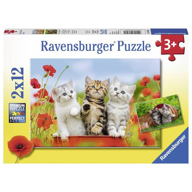 Ravensburger puzzel katjes op ontdekkingsreis - 2 x 12 stukjes