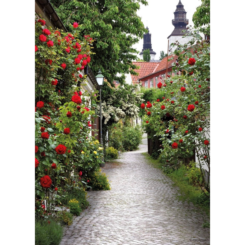 Tuinschilderij Alley Roses 70x130cm