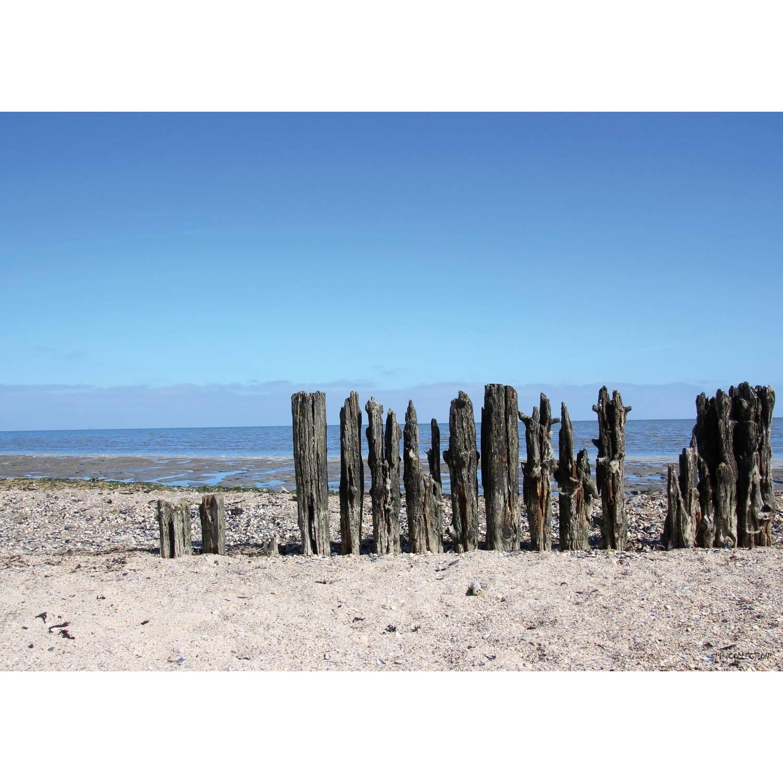 Tuinschilderij Beach - Wooden Poles 70x130cm