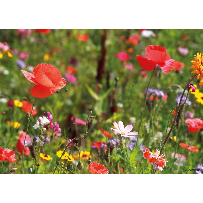 Tuinschilderij Potpourri Flowers 70x130cm
