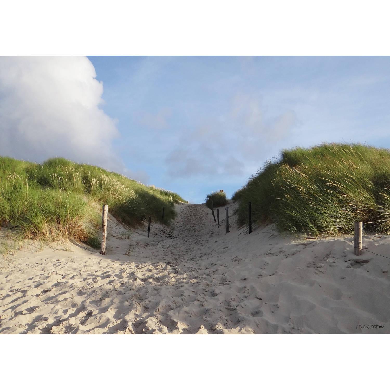 Tuinschilderij Dune Path 70x130cm