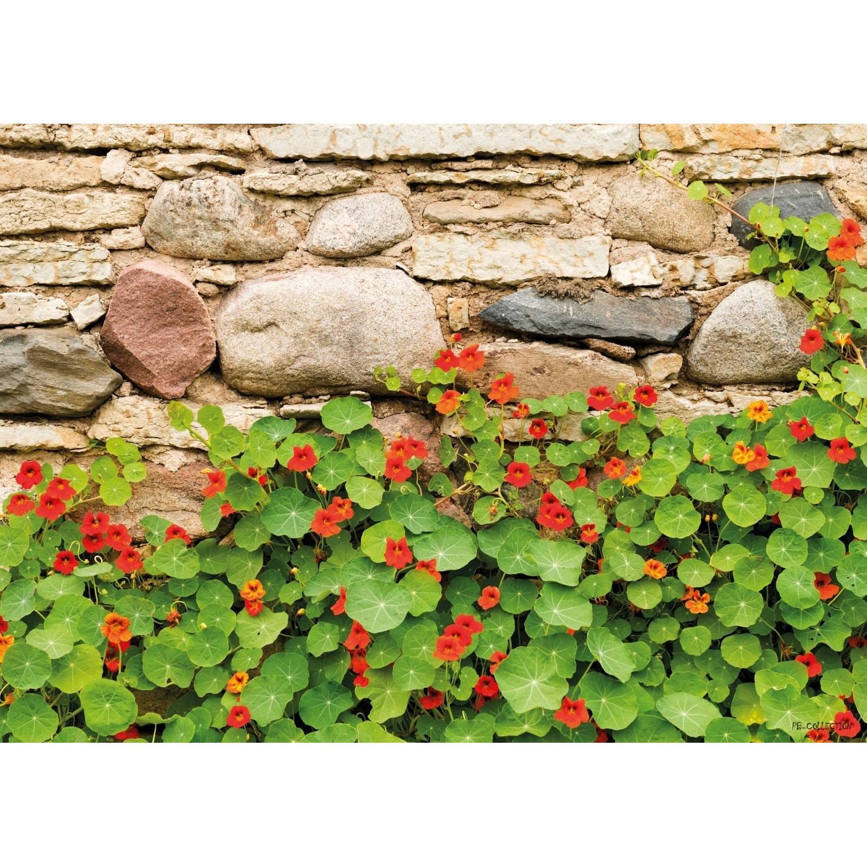 Tuinschilderij Nasturtium Wall 70x130cm