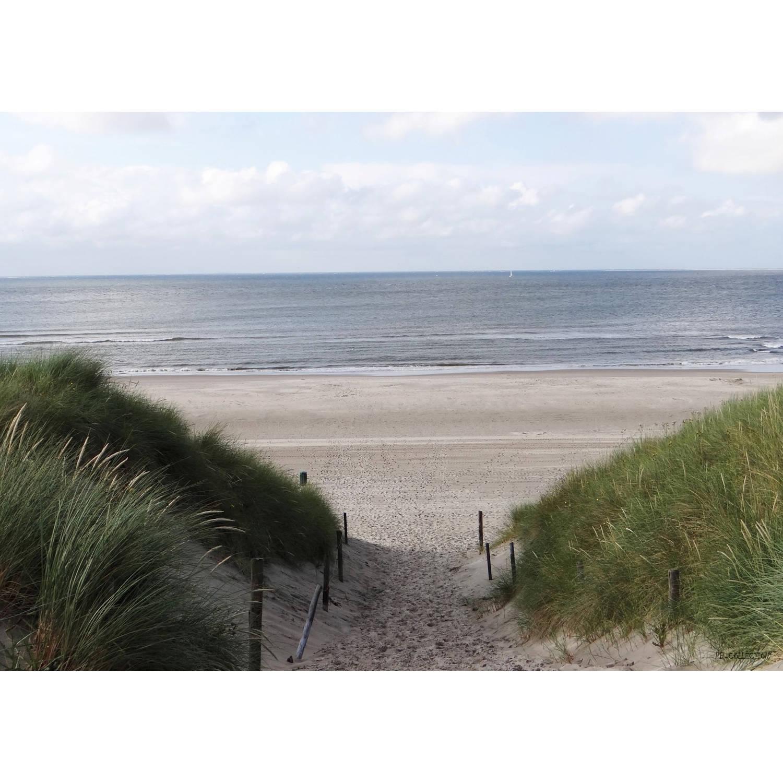 Tuinschilderij Dune Path to sea 70x130cm PB-Collection