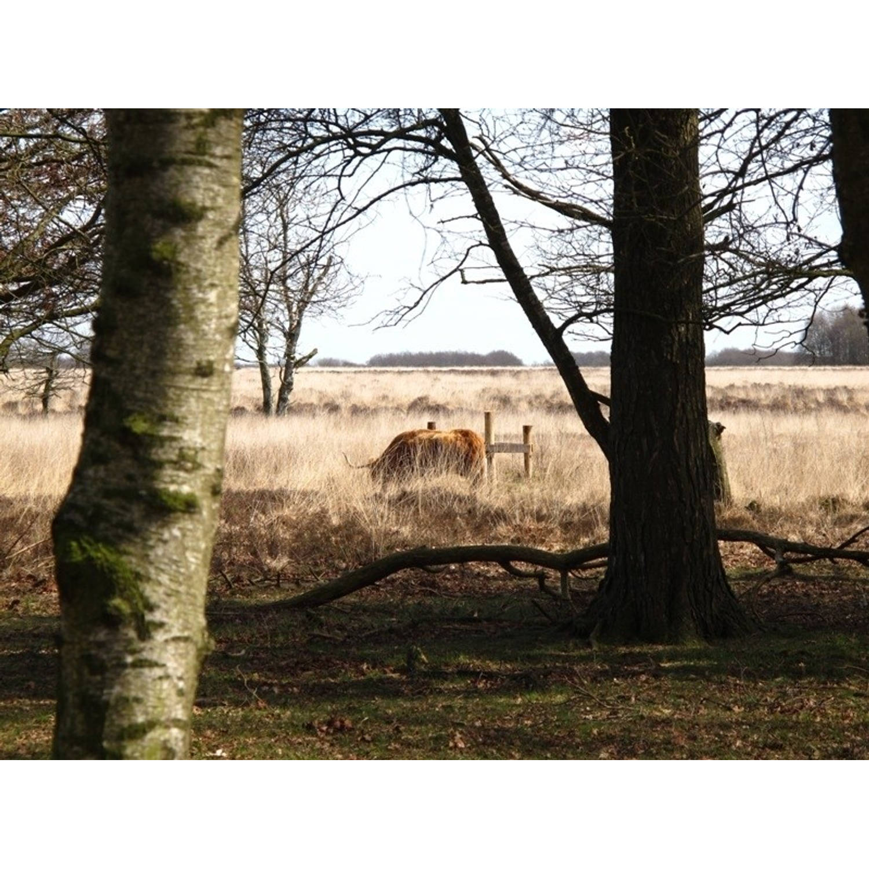 Tuindoek Hooglander l150b210cm PB-Collection