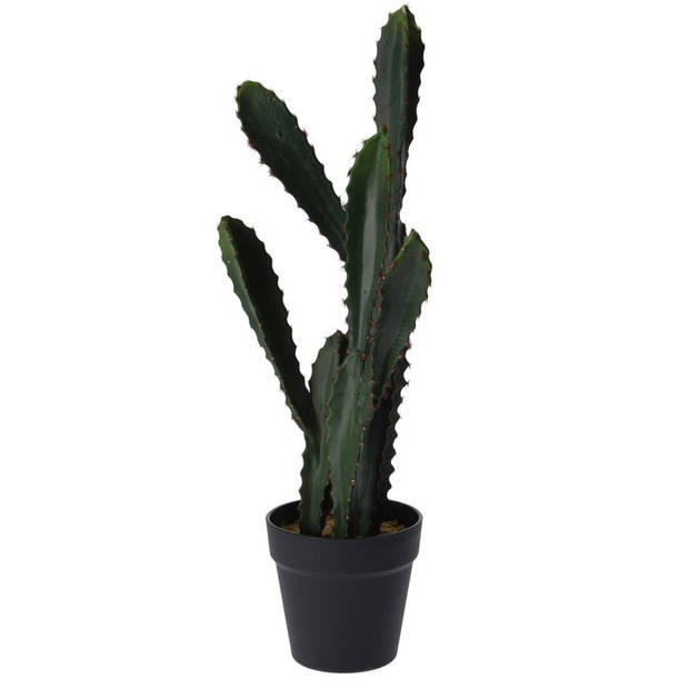 Groene kunstplant vetplant Euphorbia 55 cm