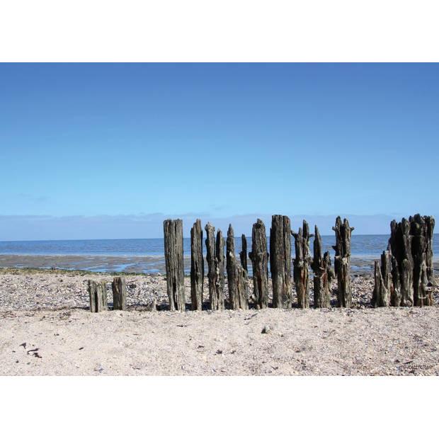 Tuinschilderij Beach / wooden poles 70x130cm
