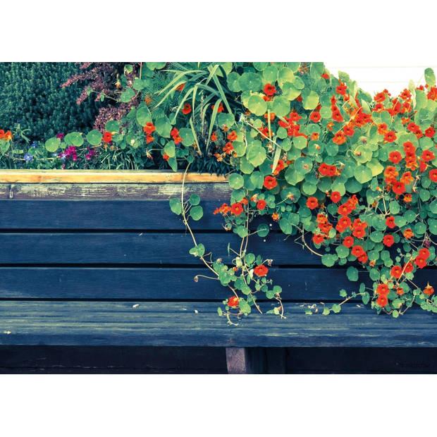 Tuinschilderij Nasturtium Bench 70x130cm