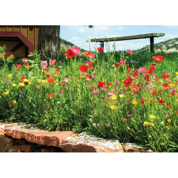 Tuinschilderij Poppy 70x130cm