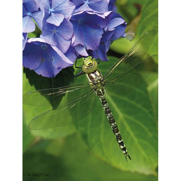 Tuinschilderij Hydrangea Dragonfly 70x130cm