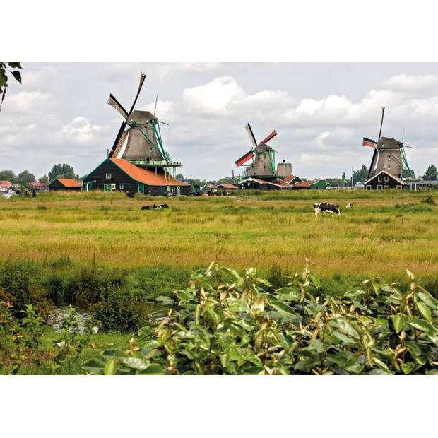Tuinschilderij Windmills 70x130cm