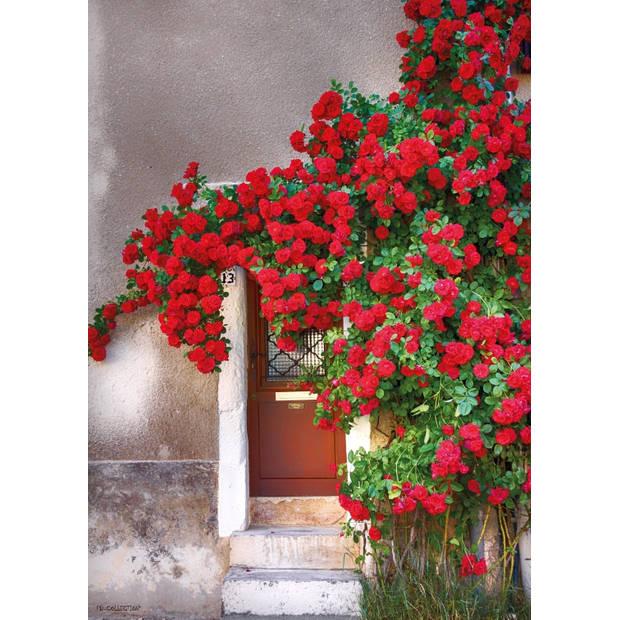Tuinschilderij Door with red flowers 70x130cm