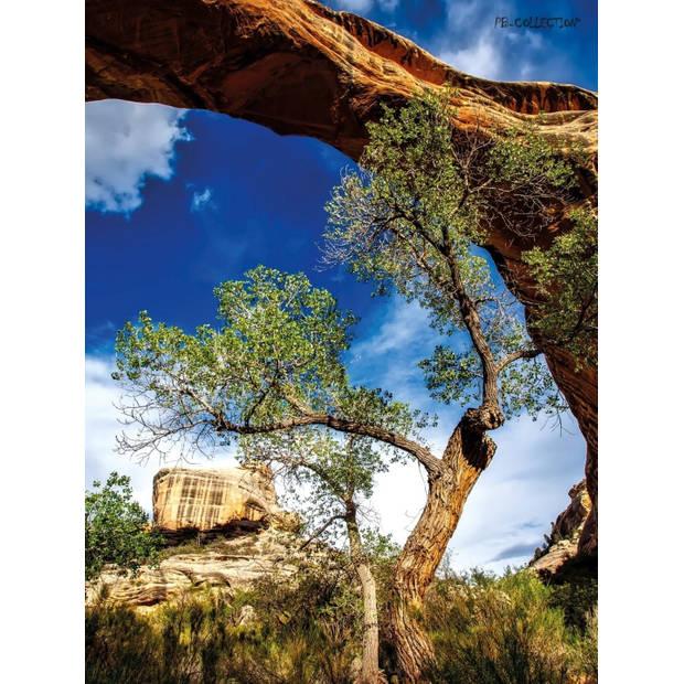 Tuinschilderij Raw Tree 70x130cm