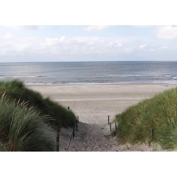 Tuinschilderij Dune Path to sea 70x130cm