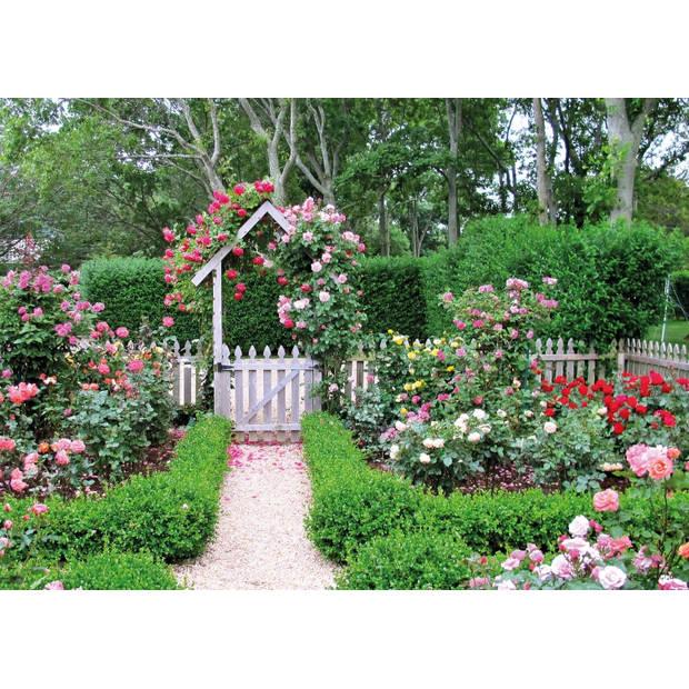 Tuinschilderij Rose Garden 70x130cm