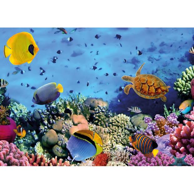 Tuinschilderij Underworld-Turtle 70x130cm