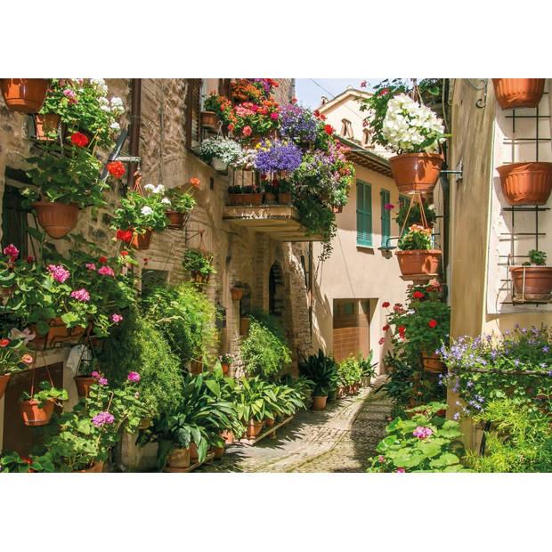 Tuinschilderij Flower street 70x130cm