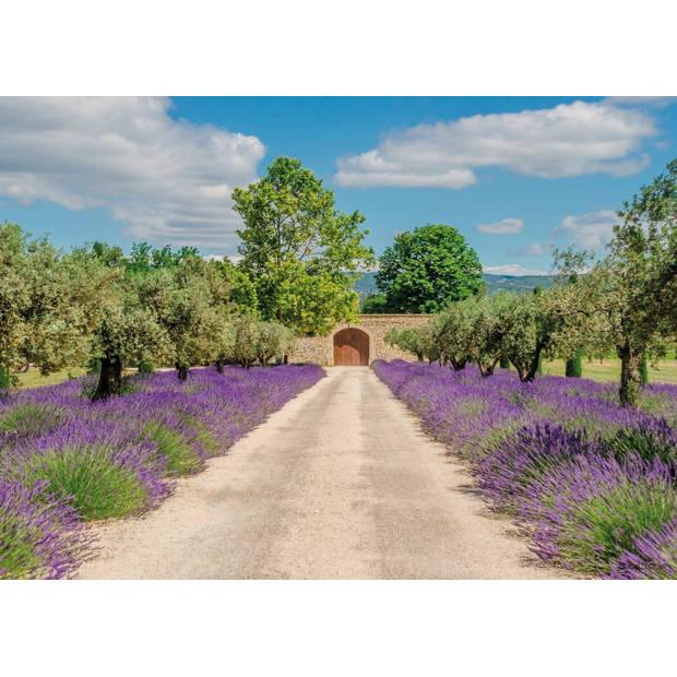 Tuinschilderij Lavender view with door 70x130cm