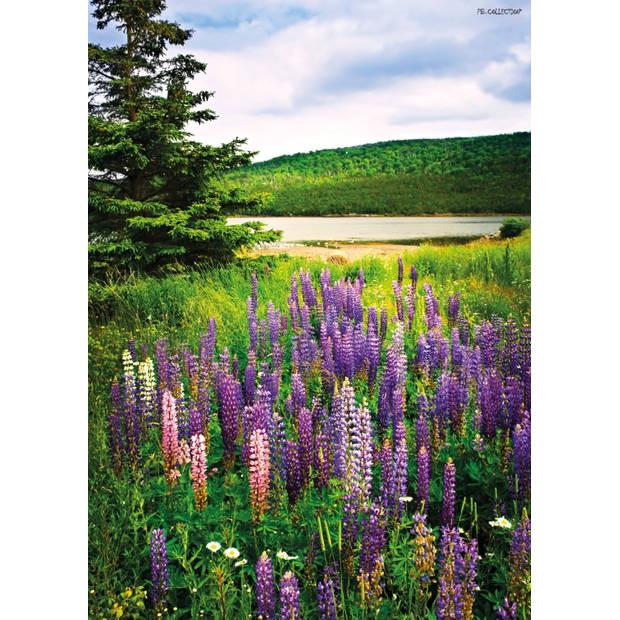 Tuinschilderij Lupin/Field 70x130cm