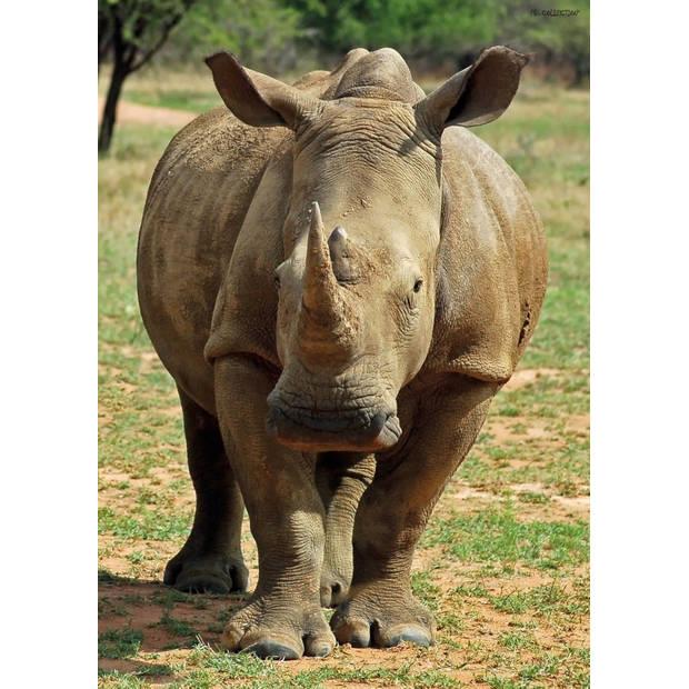 Tuinschilderij Rhino 70x130 cm