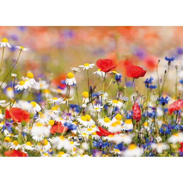 Tuinschilderij Wild Flower Mixed 70x130cm