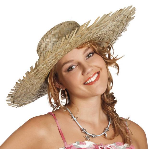 Boland hoed Havana
