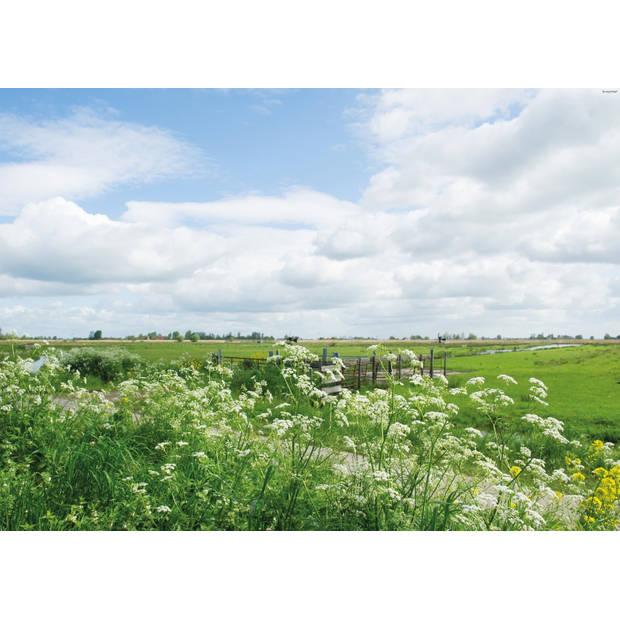 Tuindoek Parsly Field 150x210cm