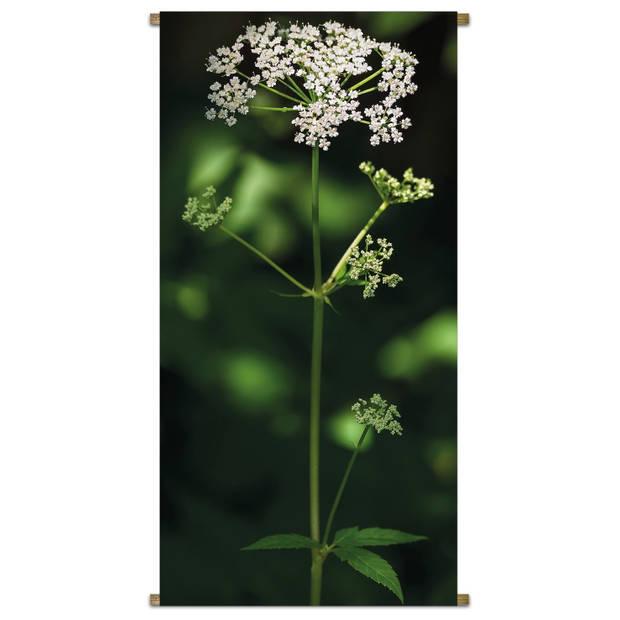 Banner Parsly Flower 85x170cm