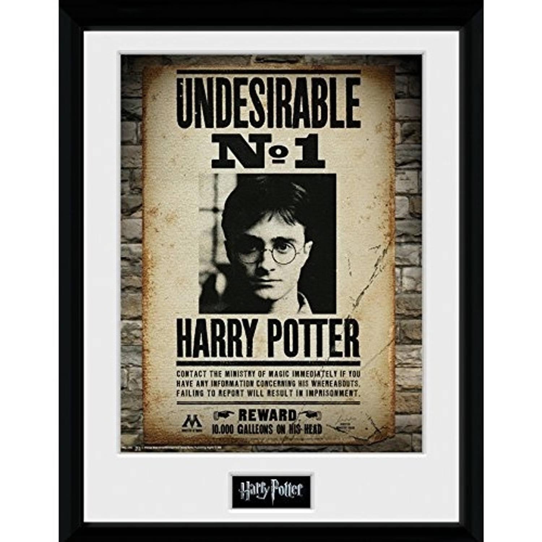 Gb Eye Poster In Lijst Harry Potter Hogwarts No 1 30 X 40 Cm