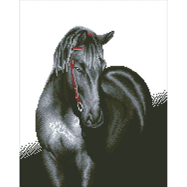 Midnight Stallion Diamond Dotz - 53x42 cm - Diamond Painting