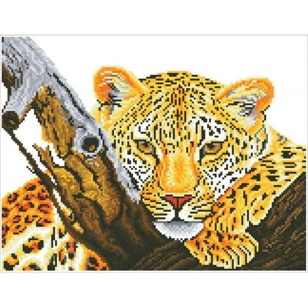 Leopard Look Diamond Dotz - 46x36 cm - Diamond Painting