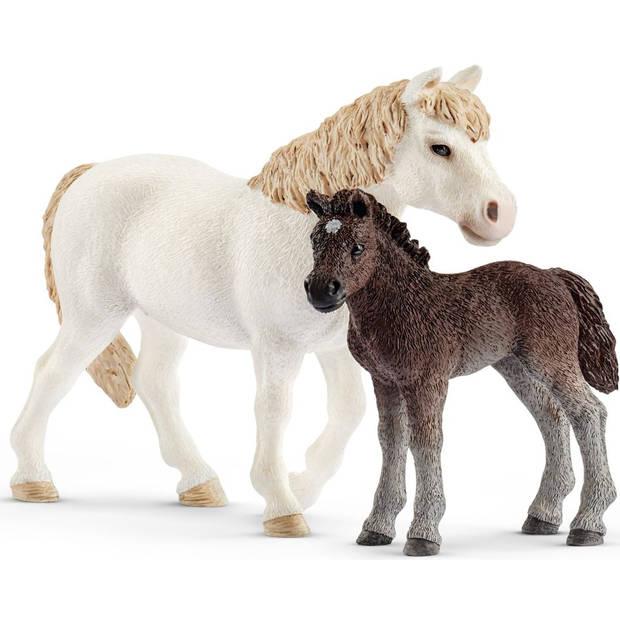 Pony en veulen Schleich - Speelfiguur Schleich Horse Club -42423