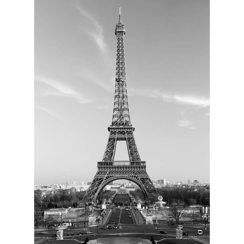 - La Tour Eiffel - 183 x 254 cm - Multi
