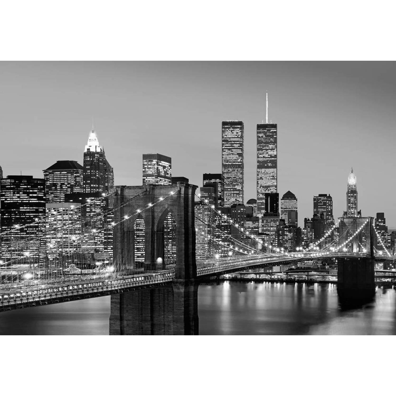 - Manhattan Skyline at Night - 366 x 254 cm - Multi