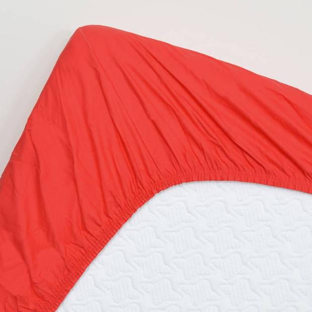 Snoozing - Topper - Hoeslaken - 160x220 cm - Percale katoen - Rood