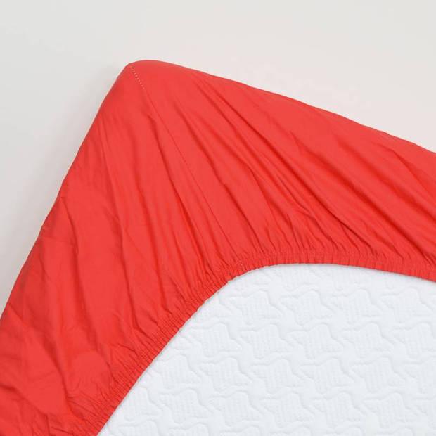 Snoozing - Hoeslaken - Percale katoen - Extra Hoog - 160x210 - Rood