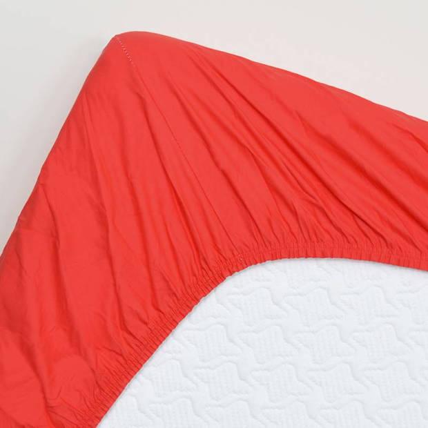 Snoozing - Katoen-satijn - Hoeslaken - 200x220 - Rood