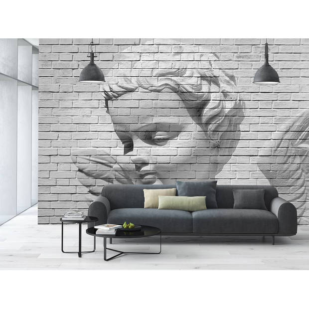 - Angel Brick Wall - 366 x 254 cm - Multi