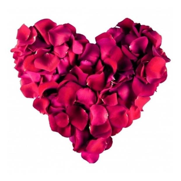 Bordeaux rode rozenblaadjes 500 stuks