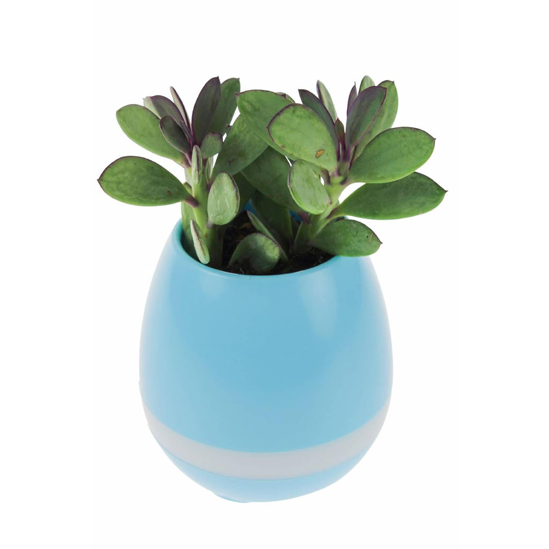 United Entertainment - Oplaadbare LED Bloempot met Bluetooth Speaker - Blauw