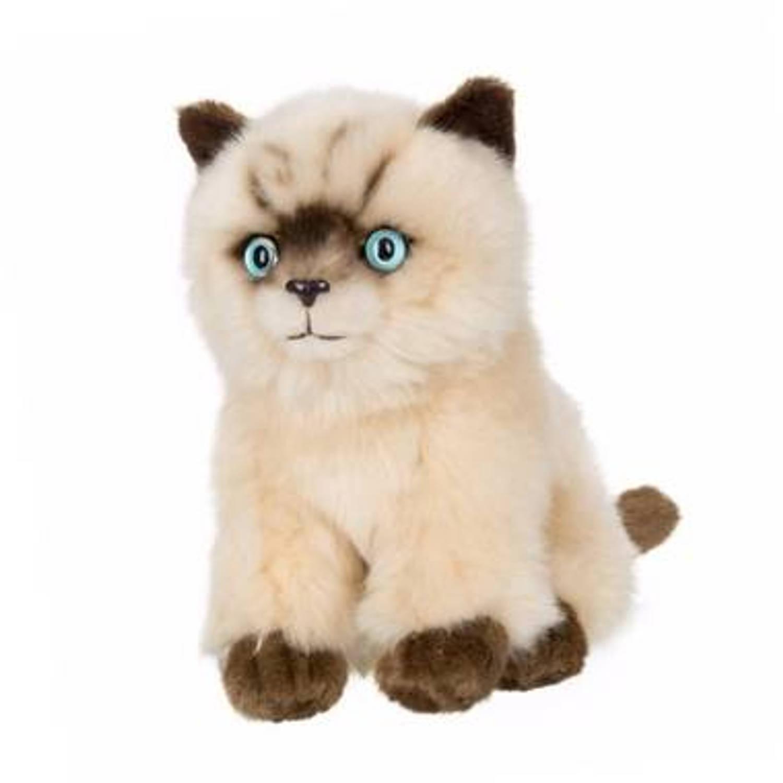 Afbeelding van Siamese katten/poezen pluche knuffel 16 cm