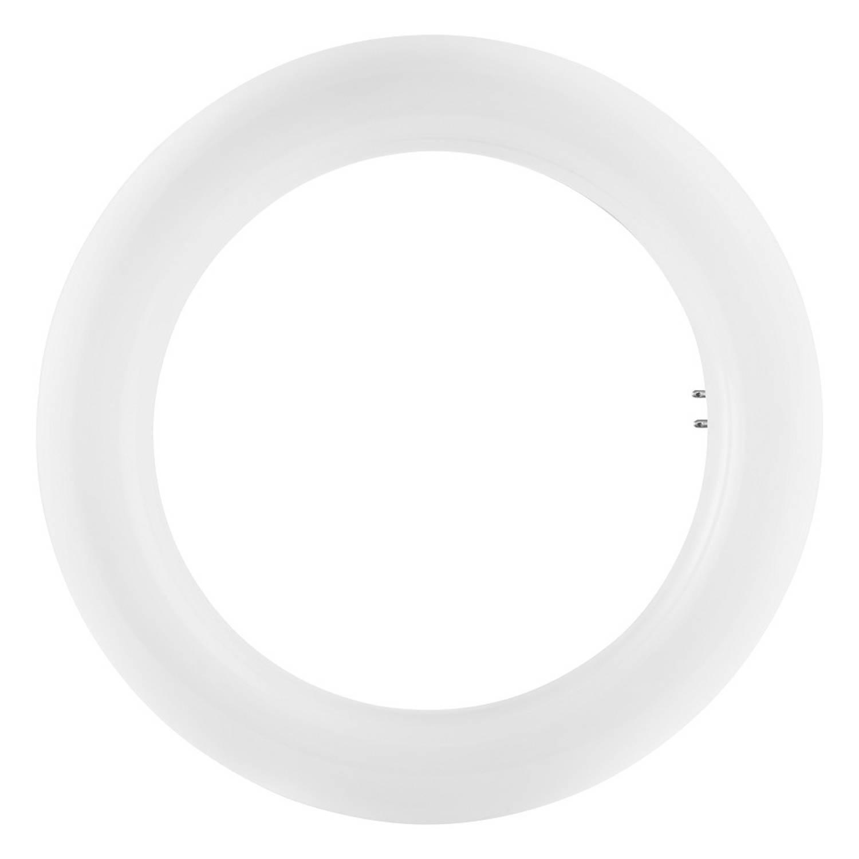 Osram LED T9 12-22W/840 G10q 1200lm (Vervangt L 22W / TL-E 22W)