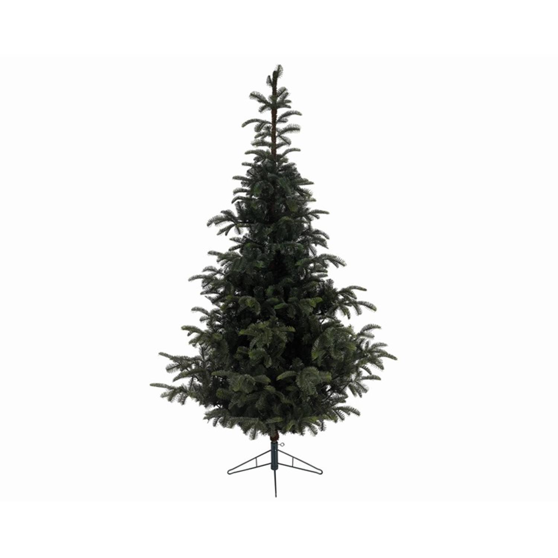 Kerstboom Everlands Nordmann Fir 150