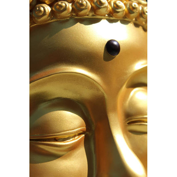Rotary Hero Boeddha Tissue box Houder - Goud