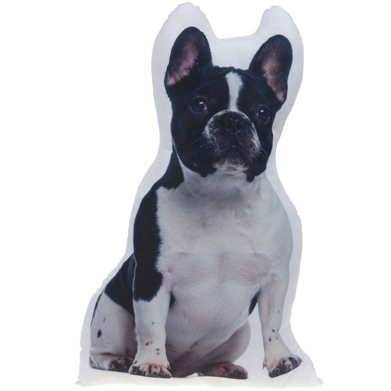 Kamparo kussen Franse Bulldog wit/zwart 62 cm