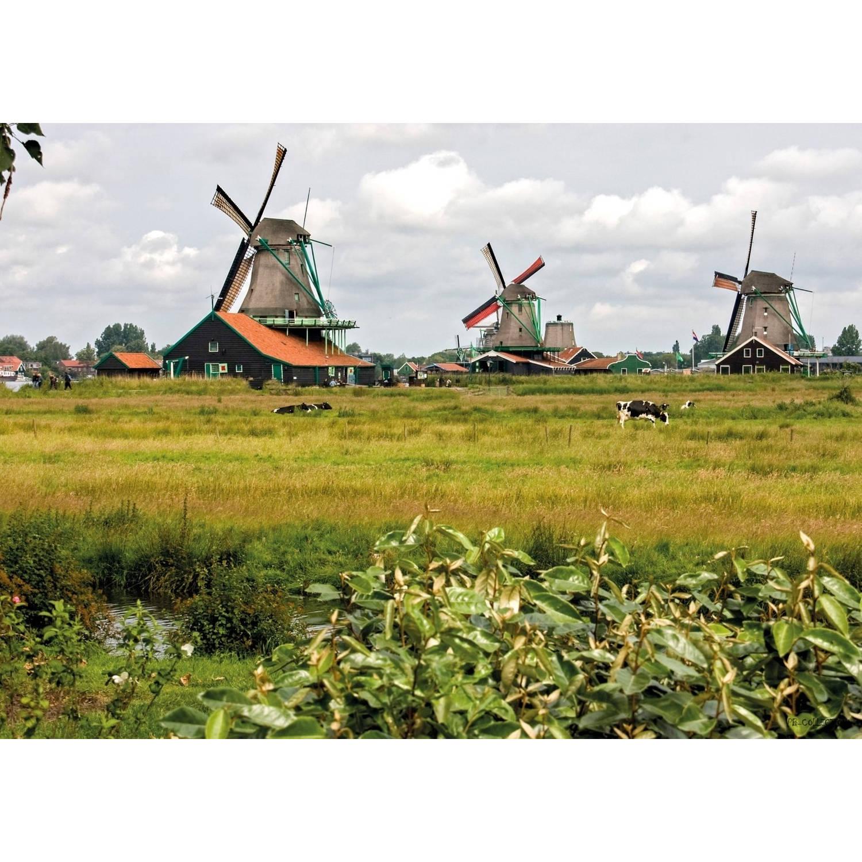 2 Stuks Tuinschilderij Windmills 50x70cm