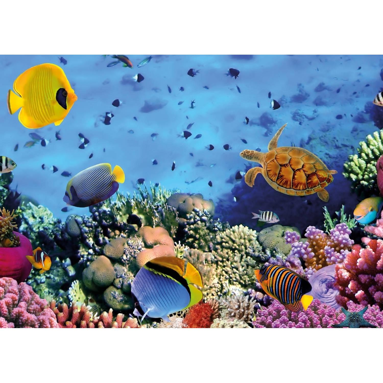 2 Stuks Tuinschilderij Underworld-turtle 50x70cm