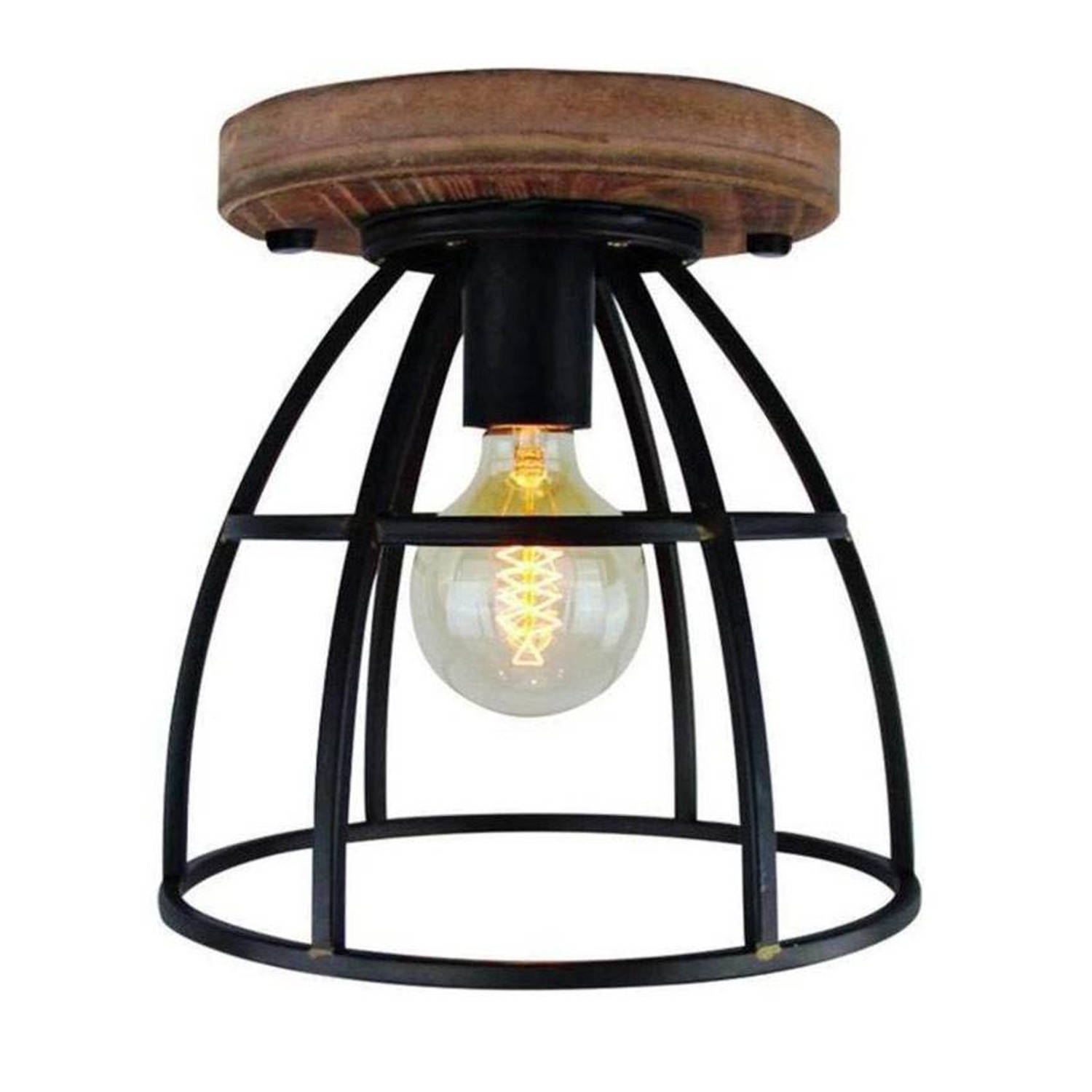 Freelight Plafondlamp Birdy groot