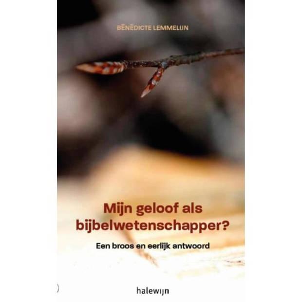 Mijn geloof als Bijbelwetenschapper?